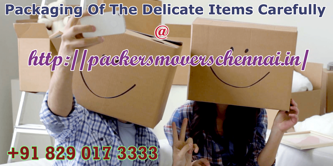 Secure Our Choices With Movers And Packers Chennai